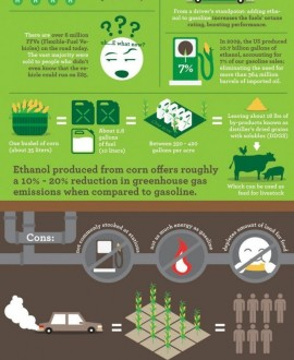 The Pros Cons And Cost Of Production Of Ethanol Fuelpetrol Or