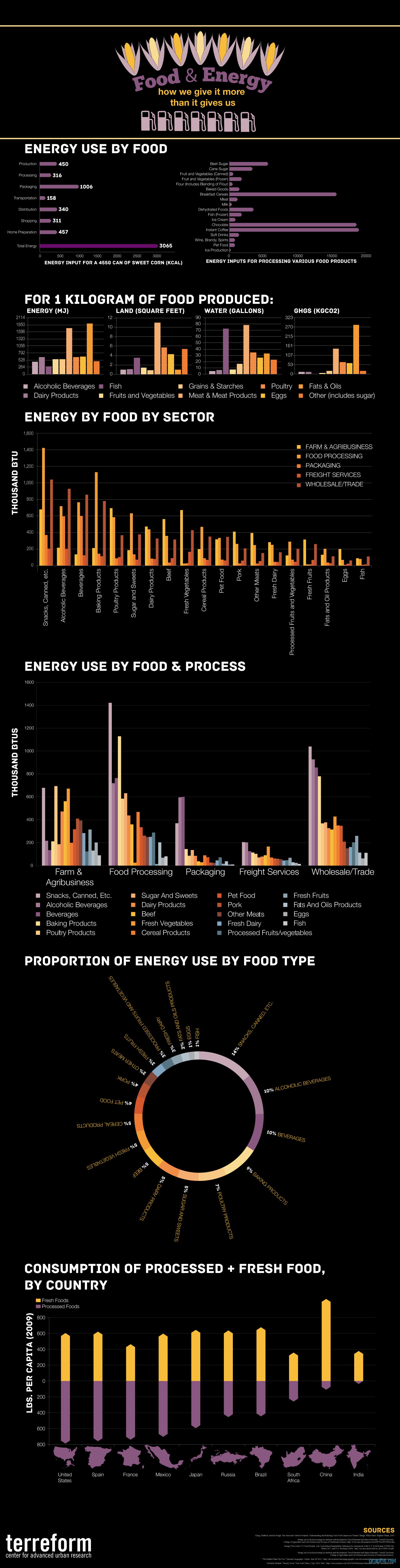 food and energy facts