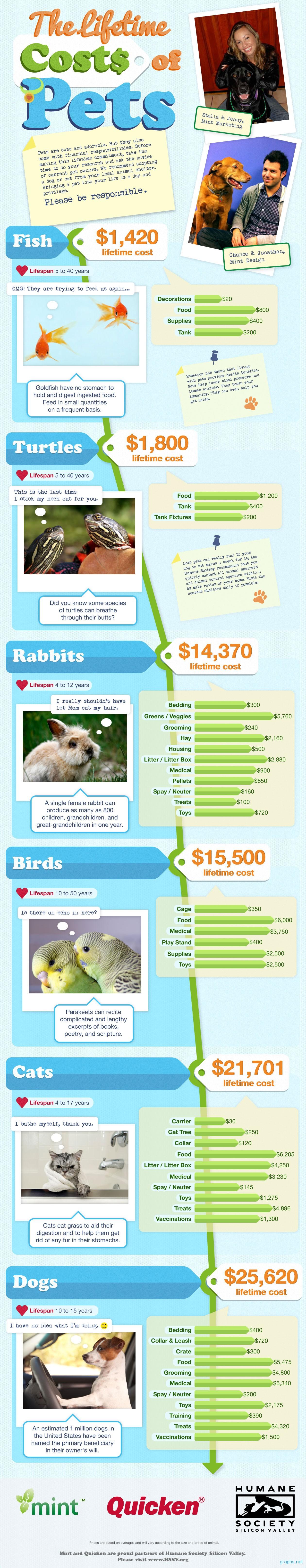 cost of pets statistics