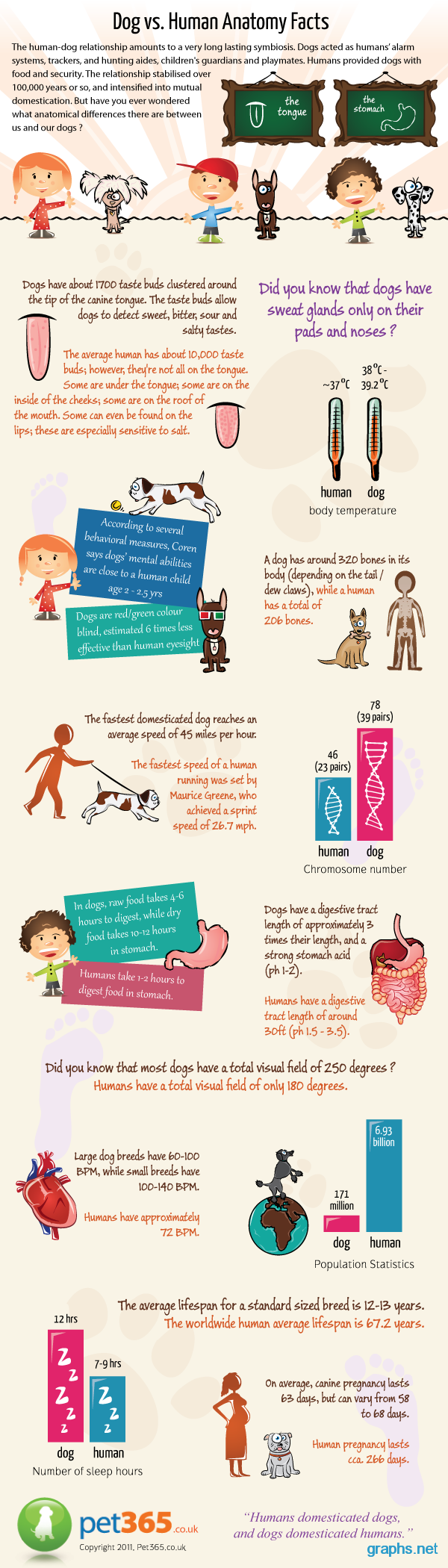 facts about dogs vs humans