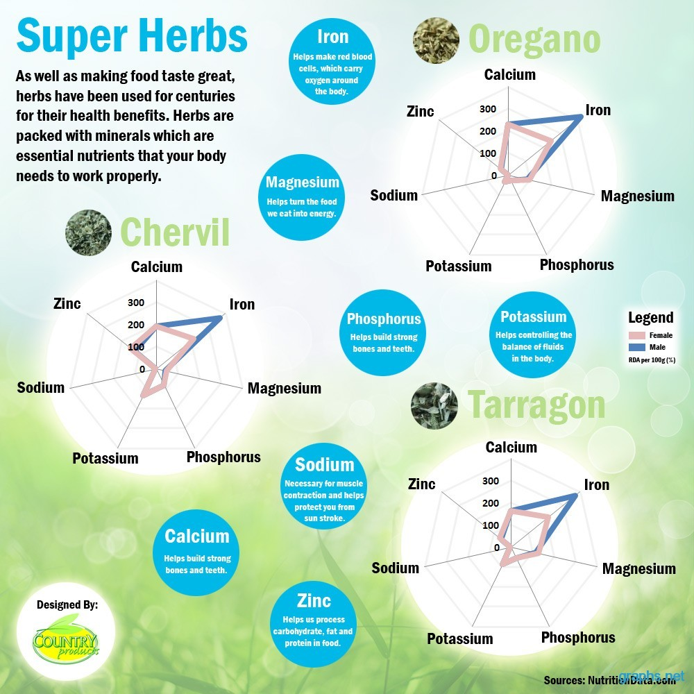 herbs cycle