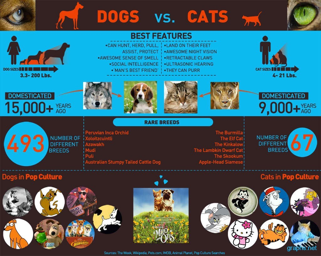dogs-vs-cats-best-features