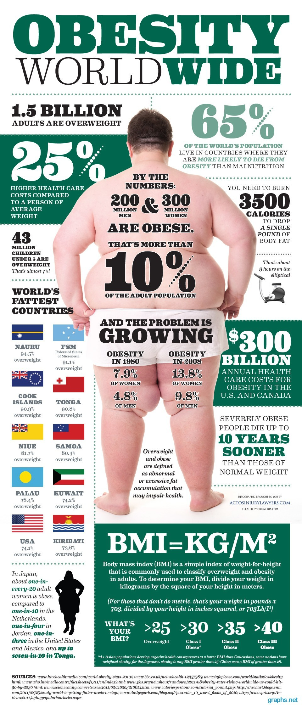 world wide obesity facts