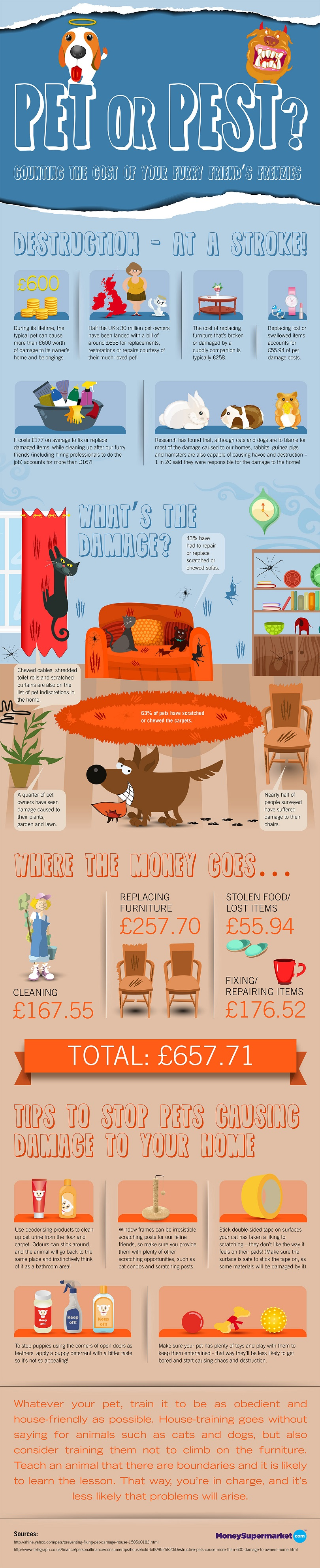 Pesky Pets - An Expensive Affair