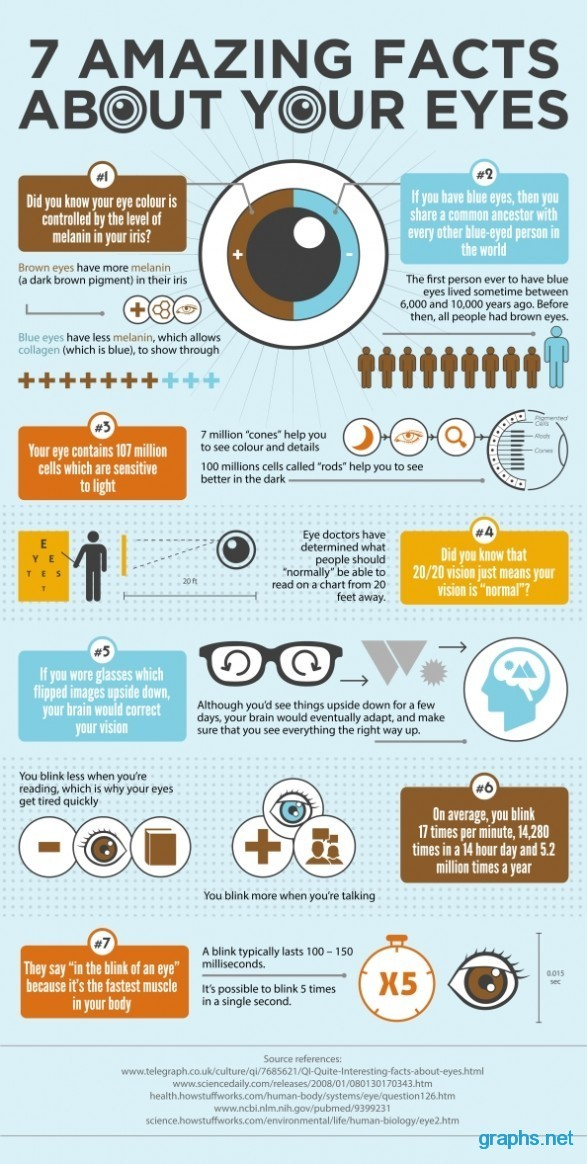 Amazing Facts About Eyes Of Human Beings