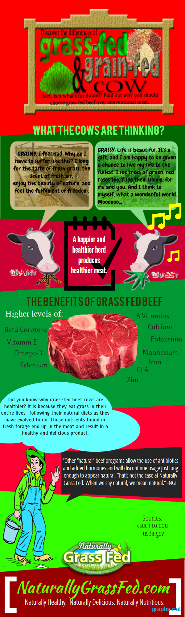 Grass Fed vs. Grain Fed Cows