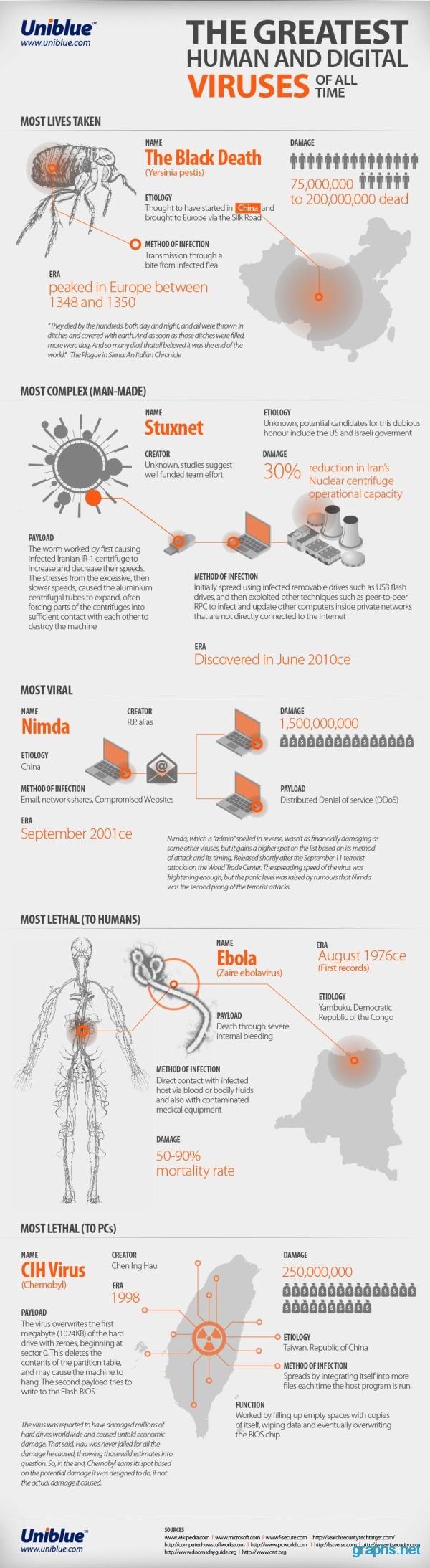 Human and Digital Viruses