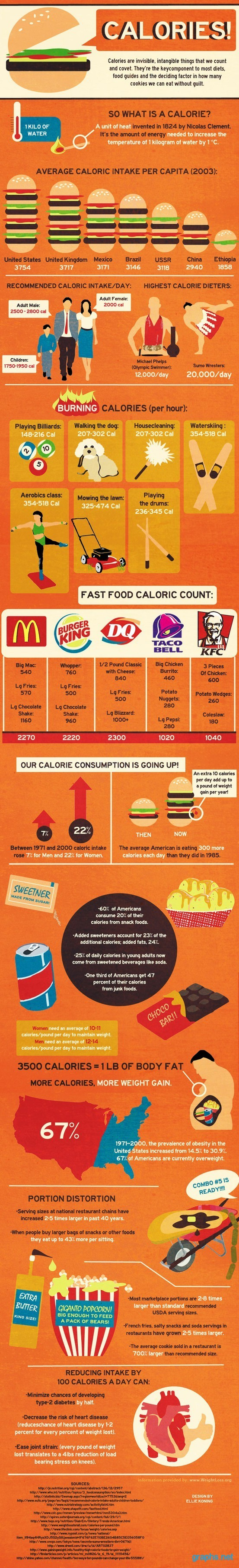 Information About Calories