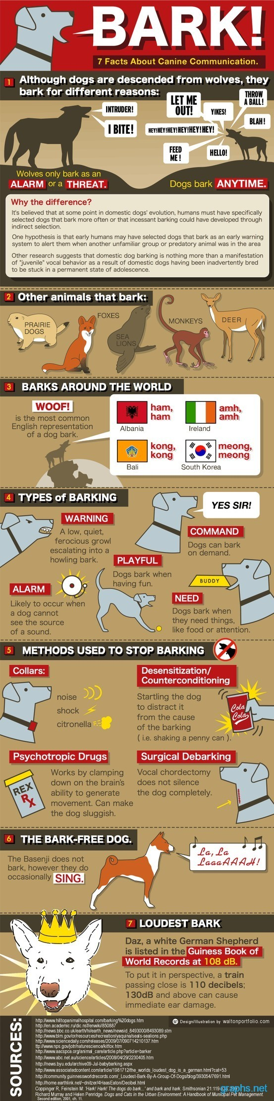 Interesting Facts about Animal Barks