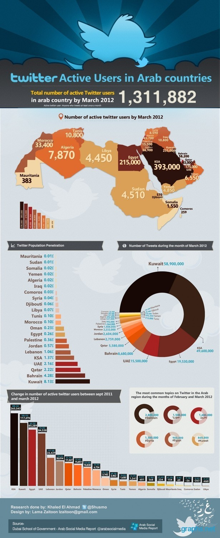 Twitter Users in Arab World