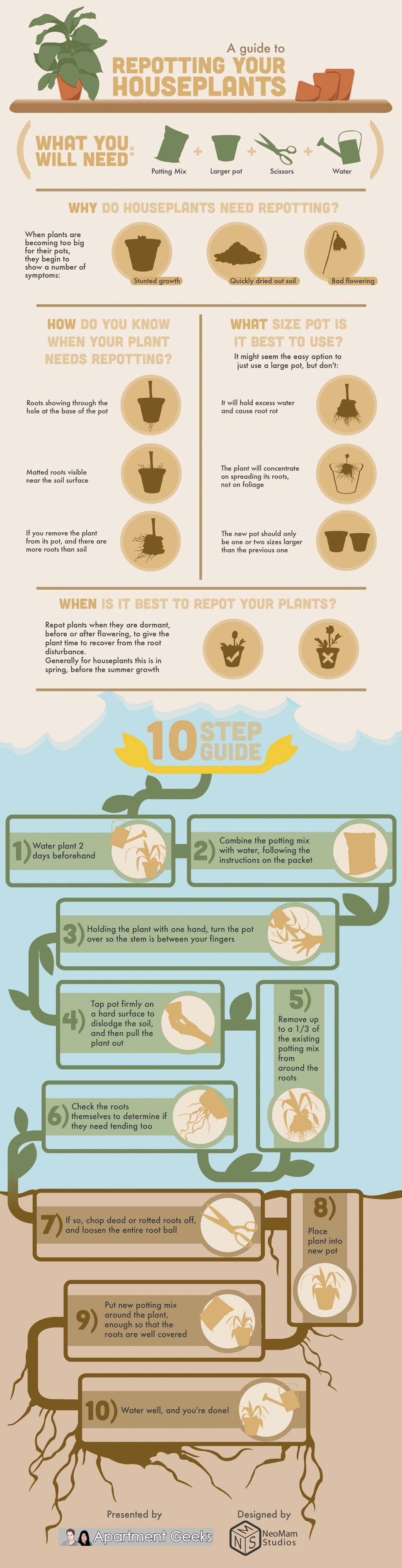 A 10 Step Guide to Repot Plants in your House Infographic