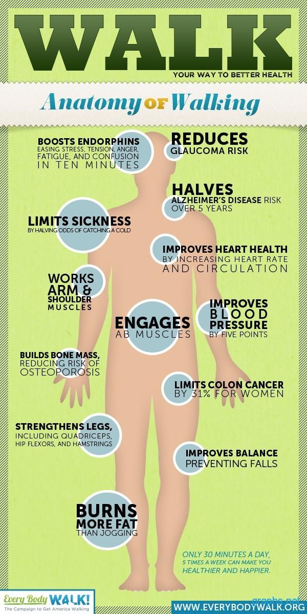 Walk For Better Health