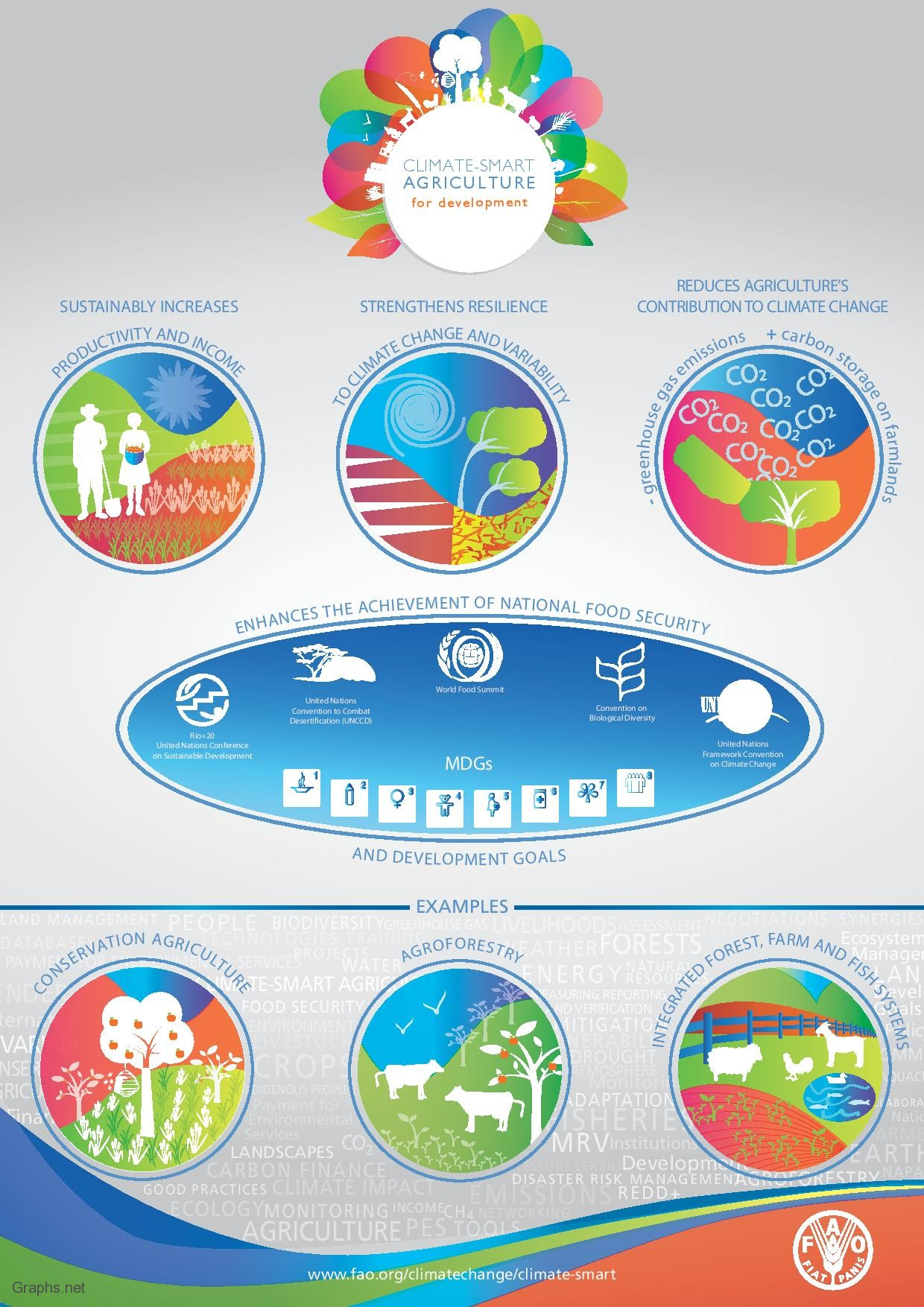 Top 11 Natural Resources Infographics Infographics