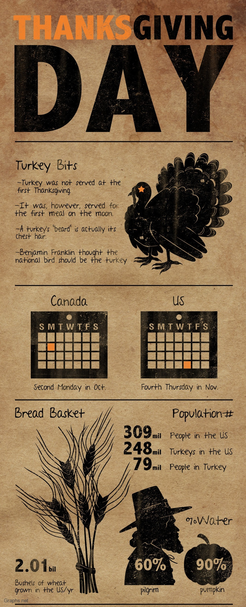 Turkey Bits on Thanksgiving Day