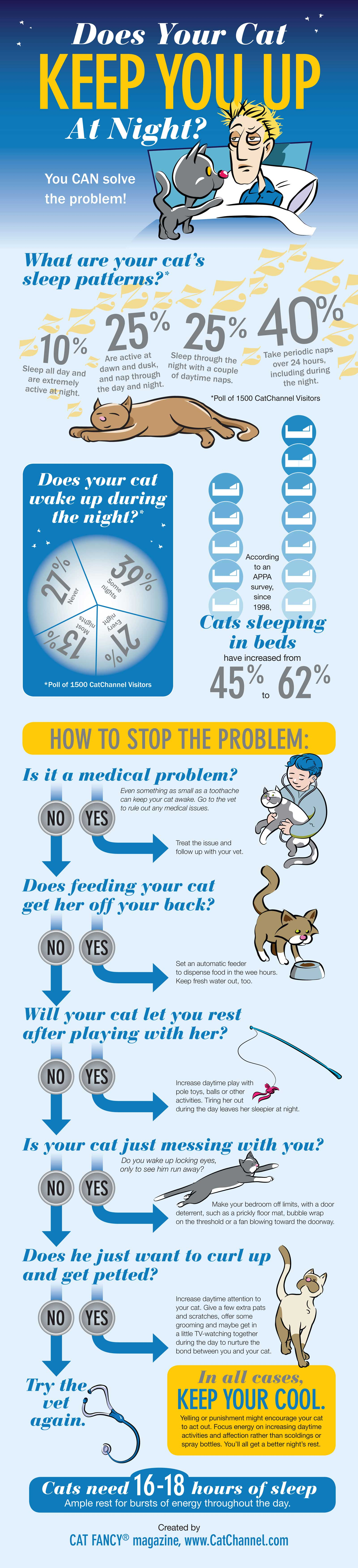 Does your cat keep you up at night
