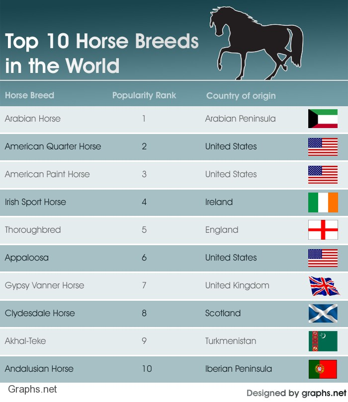 Top 10 Horse Breeds in the World