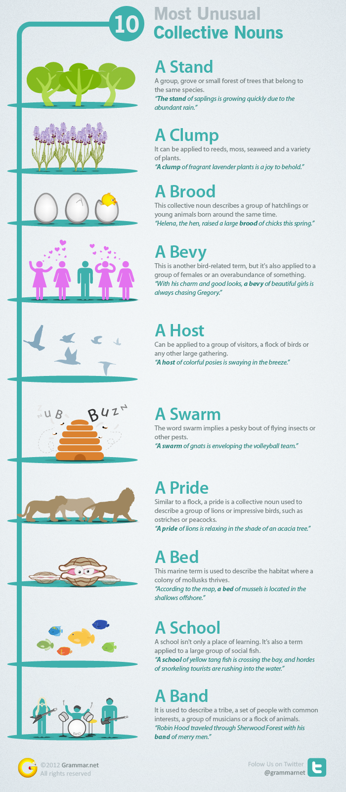 10 Most Unusual Collective Nouns