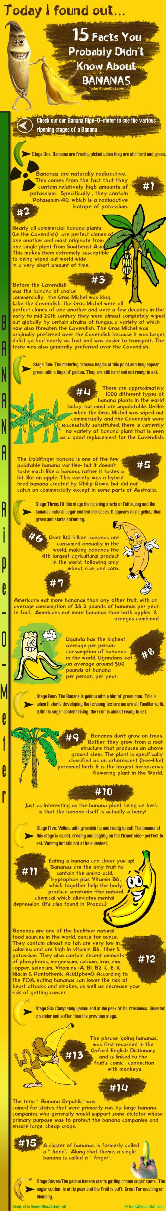 Bananas: The Wonder Fruit