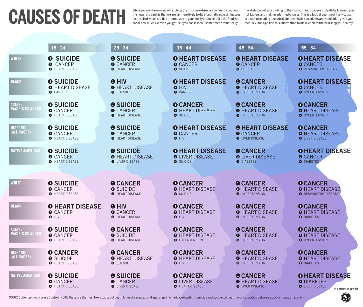 Top 12 Death Infographics - Infographics | Graphs.net