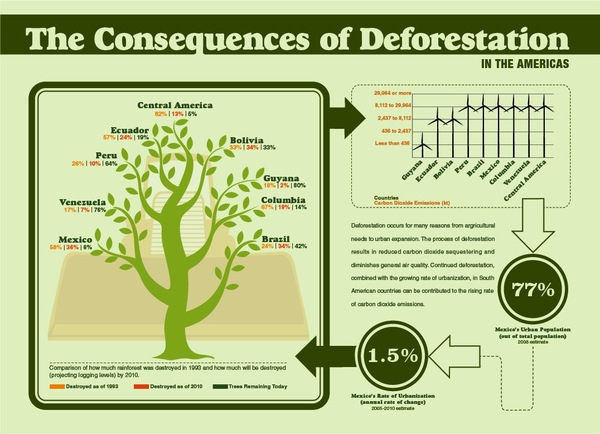 Deforestation and its Consequences in America