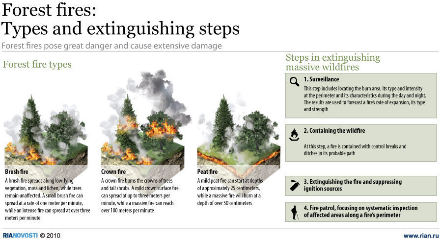 Different Types of Forest Fires