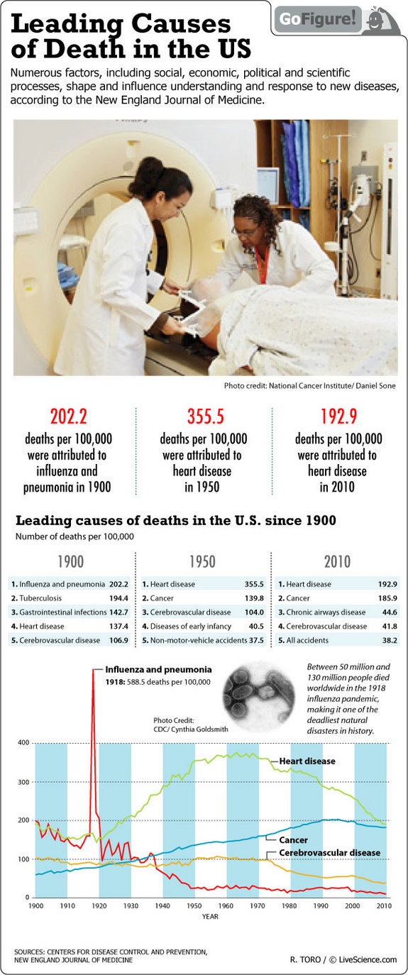 Main Causes of Death in the United States