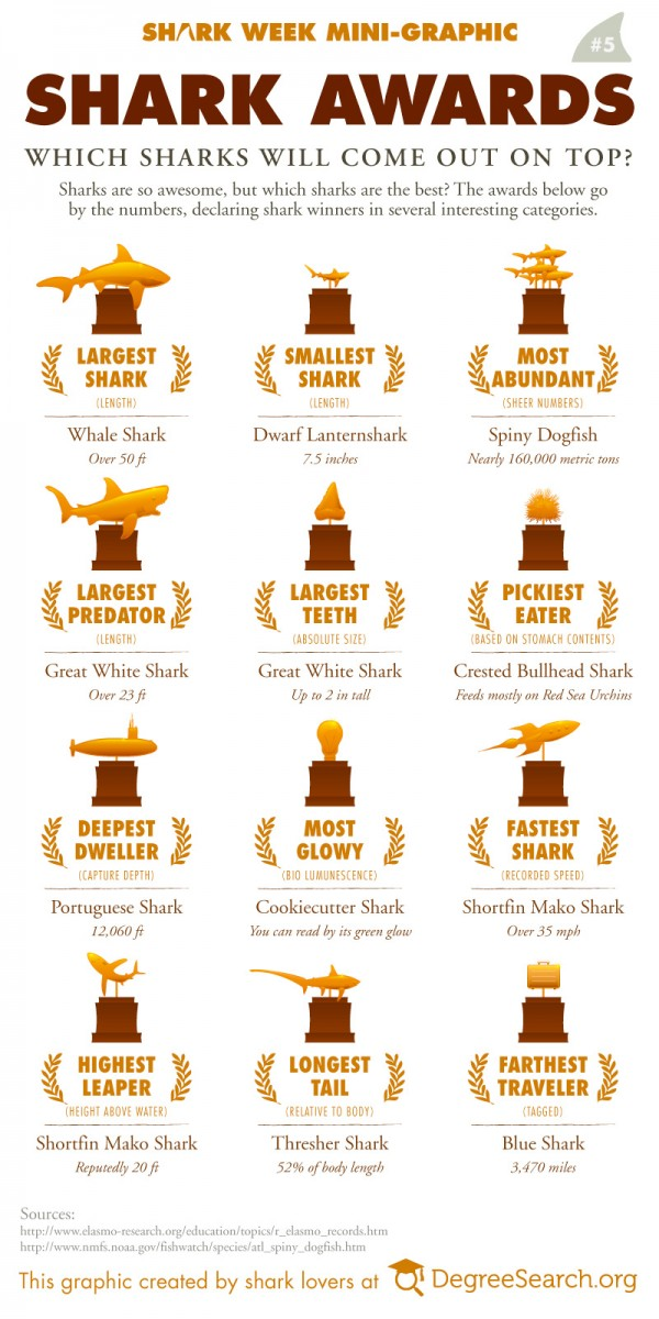 Shark awards