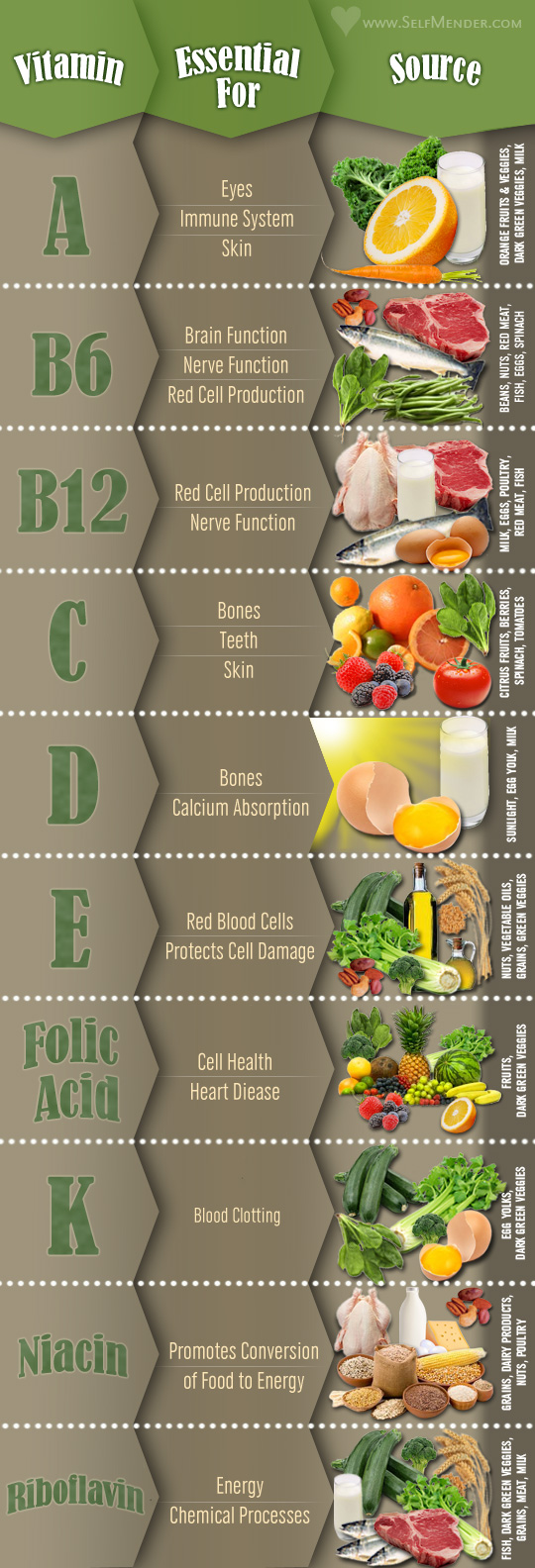 Vitamins And Their Food Sources Infographics By Graphs Net