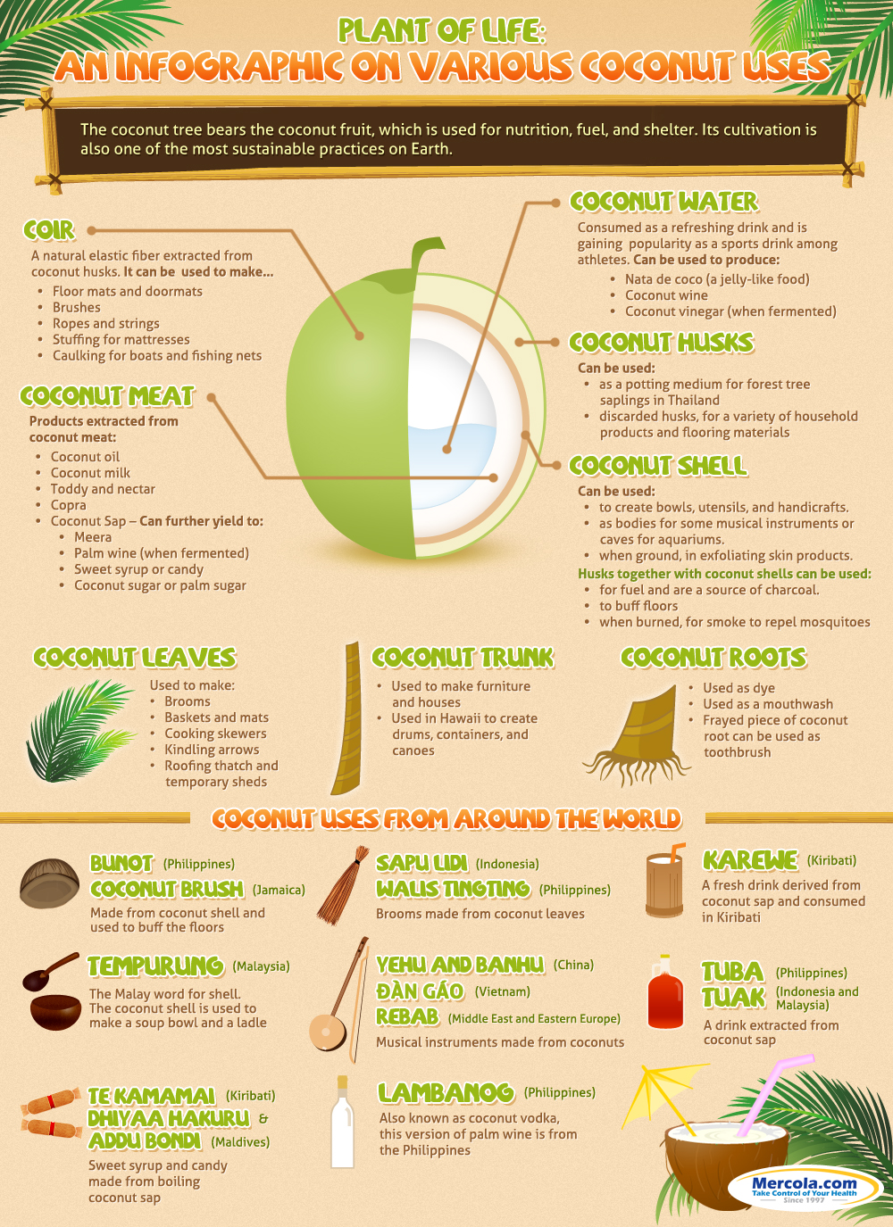 Many Benefits of Coconut