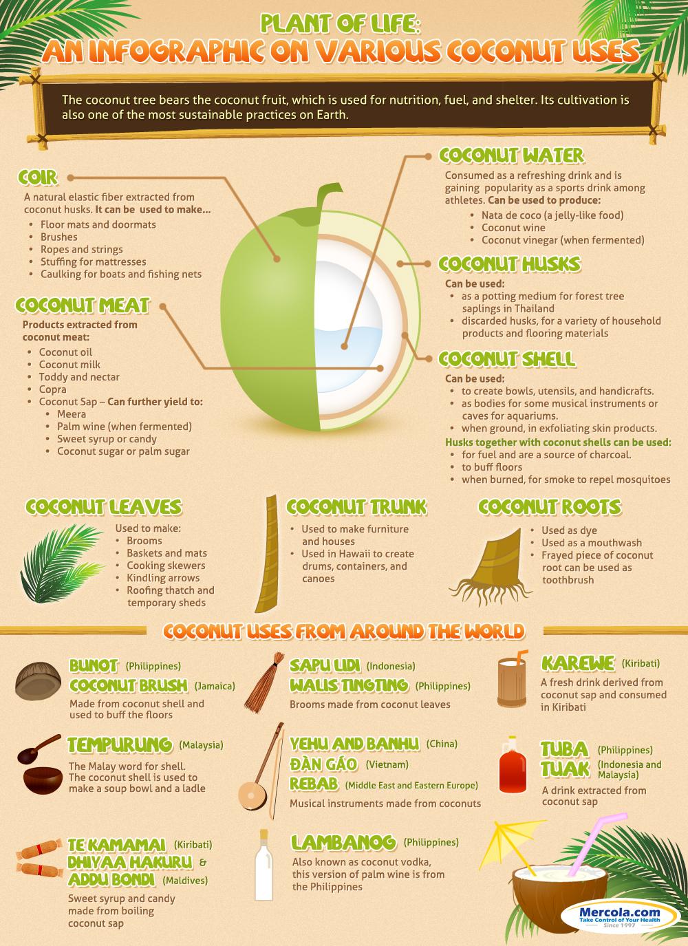 Many Benefits of Coconut