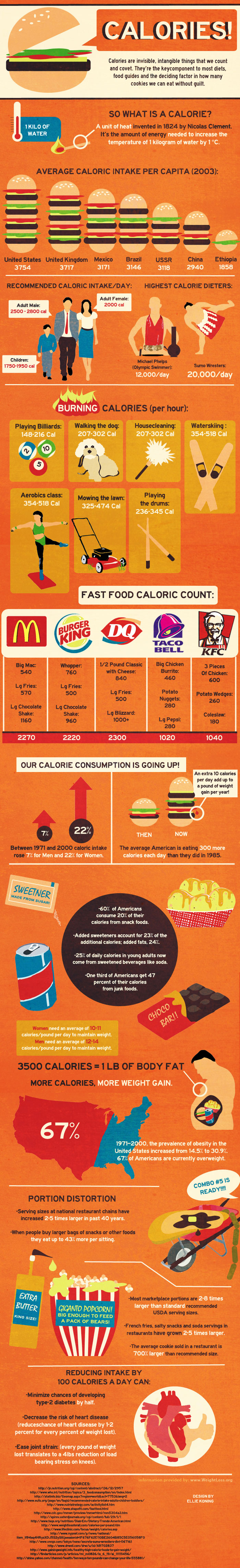 Calorie Count - Important Facts