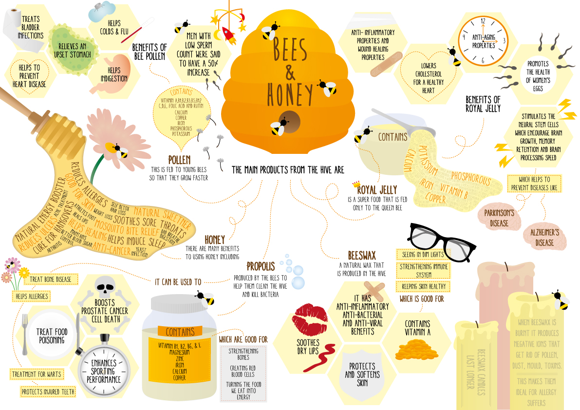 Facts about Honey and Honey Bees