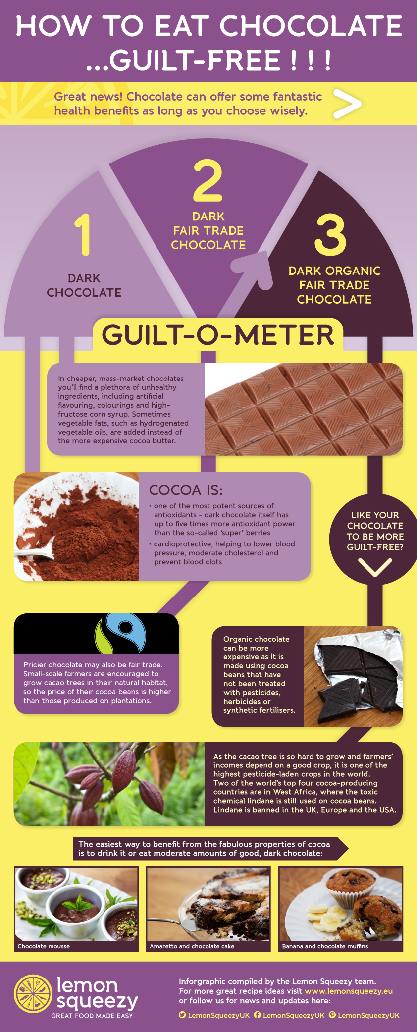 Interesting Chocolate Facts - Infographics | Graphs.net