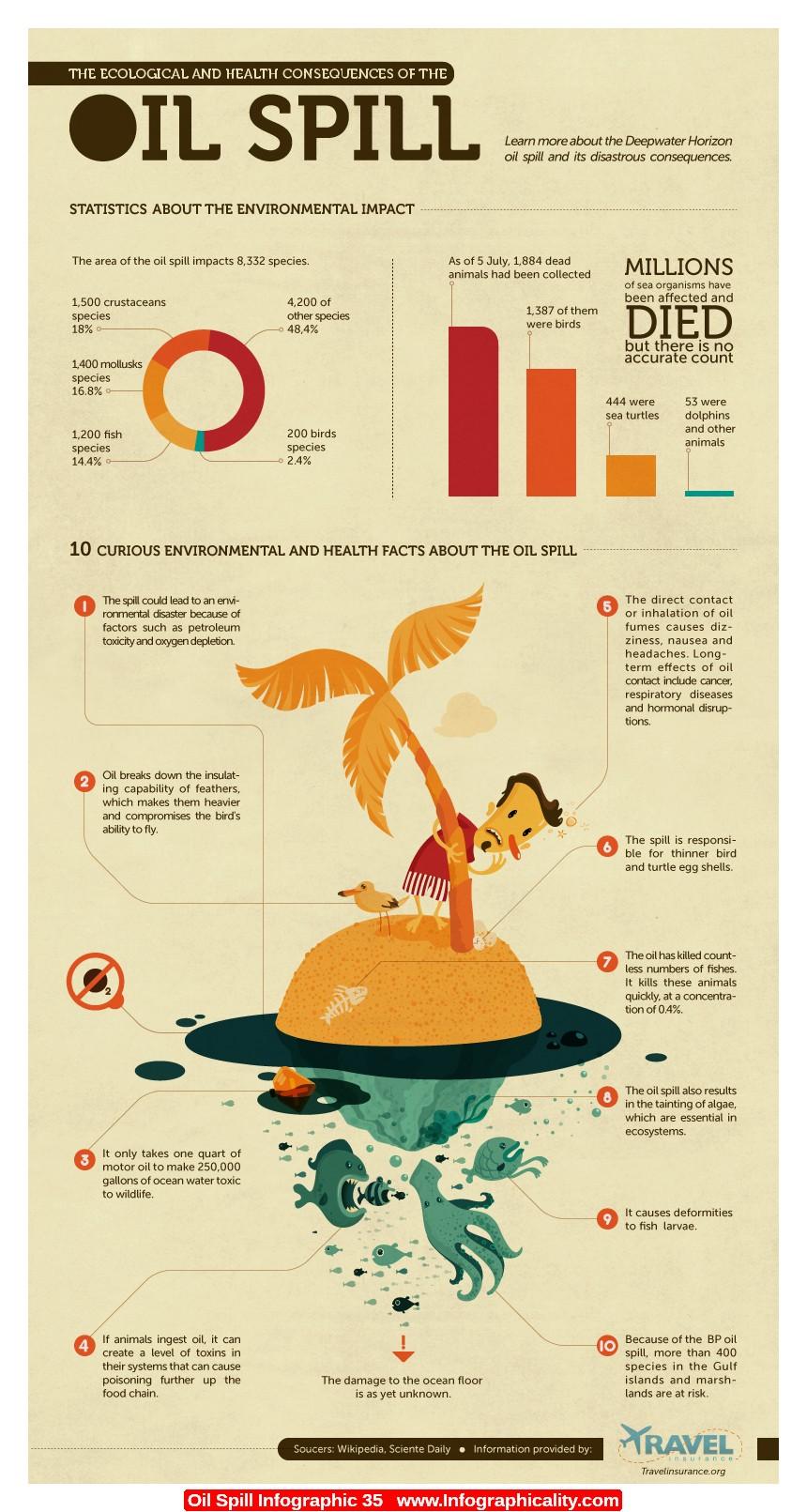 Environmental Hazards Of Oil Spill