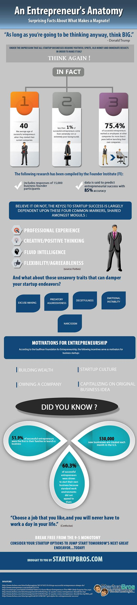 an-entrepreneurs-anatomy_52884b74aed88