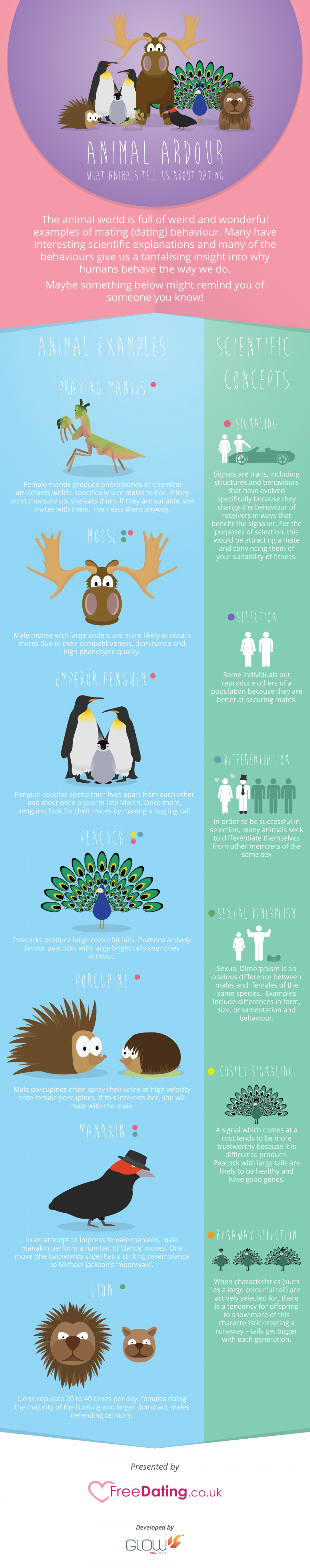 Strange Mating Facts About Animals
