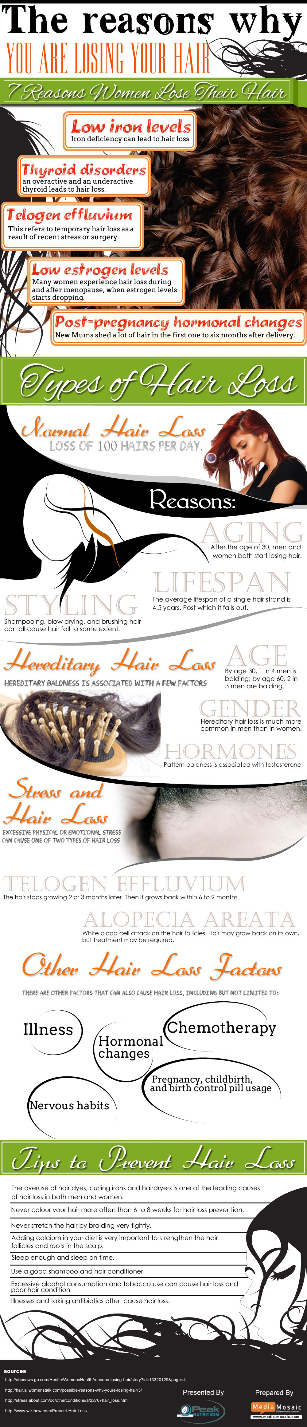 03 losing-hair-infographic2