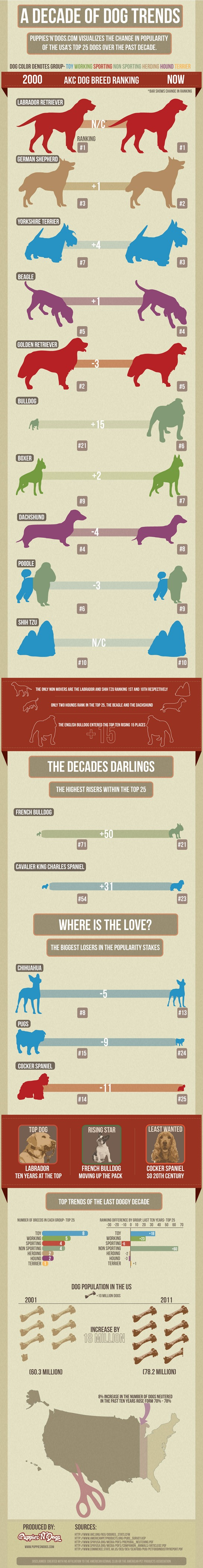 A decade of dog trends