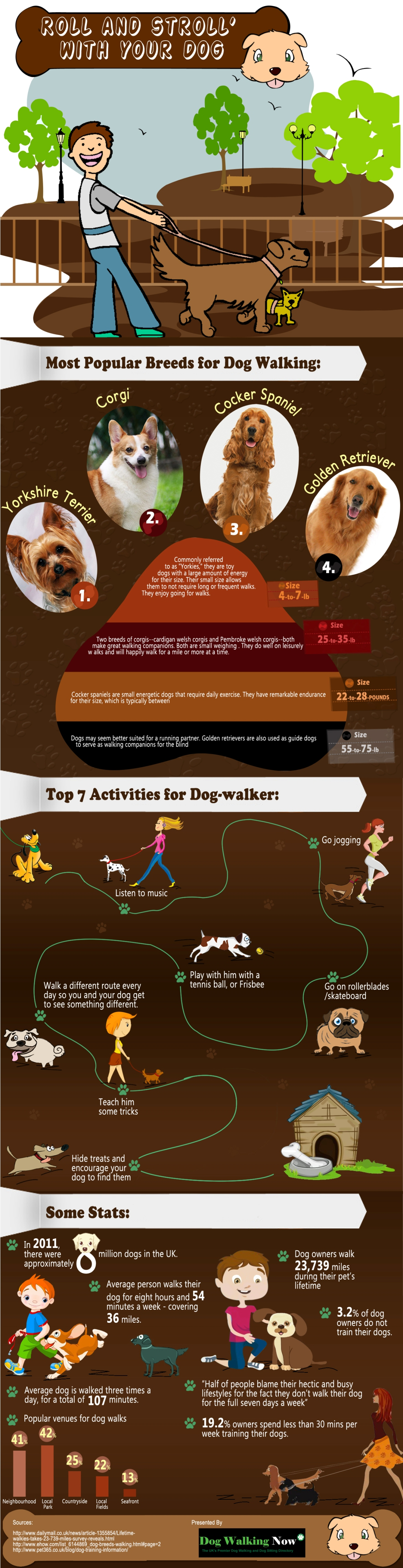 Roll and stroll with your dog