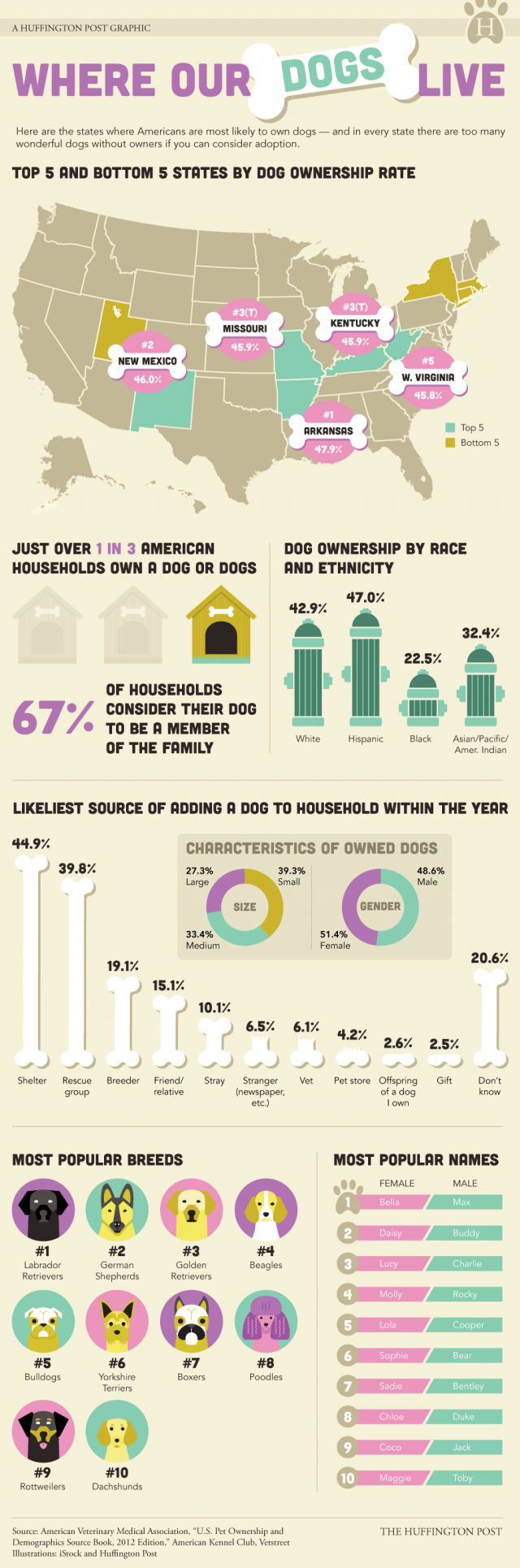 Where our dogs live