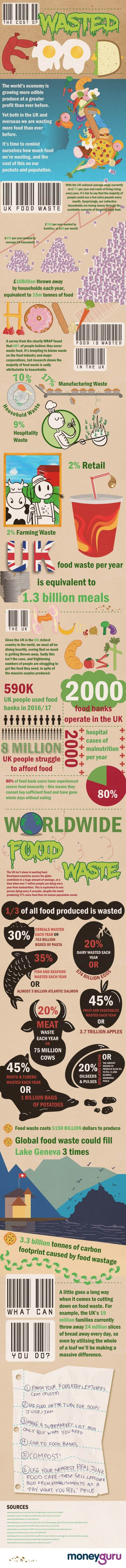 Food Wastage Infographic