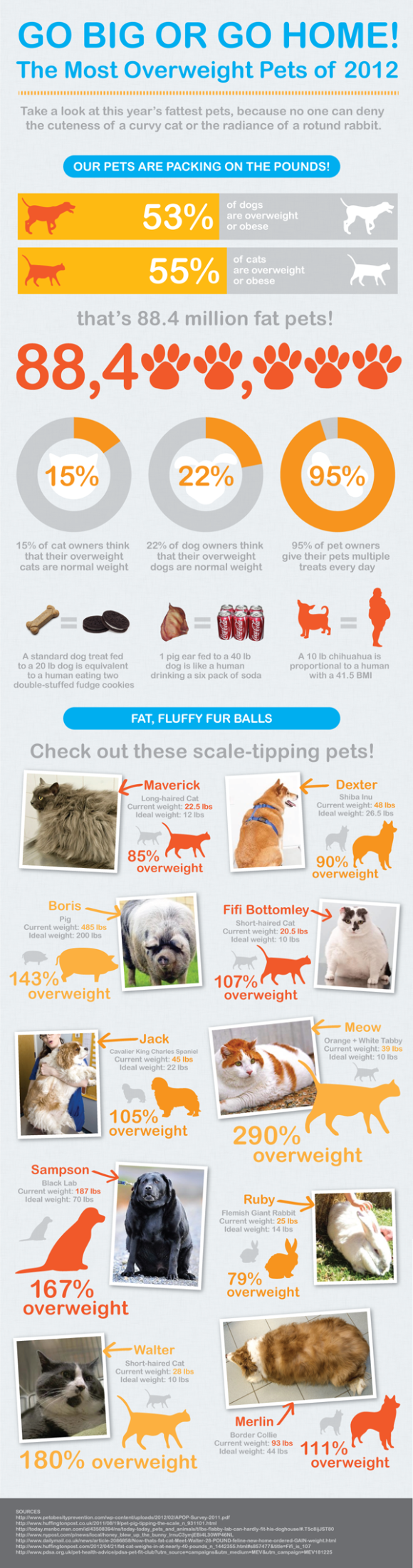 The Most Overweight Pets of 2012