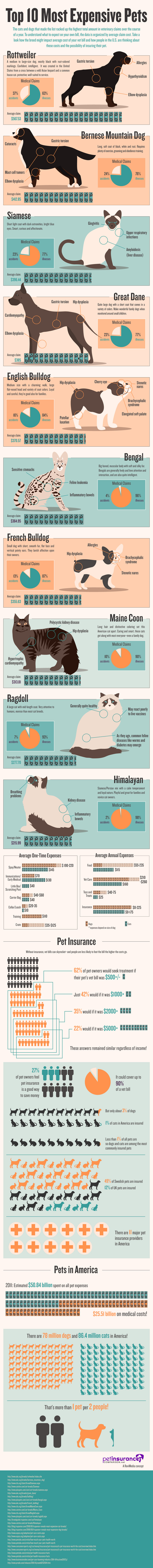 Top 10 most expensive pets