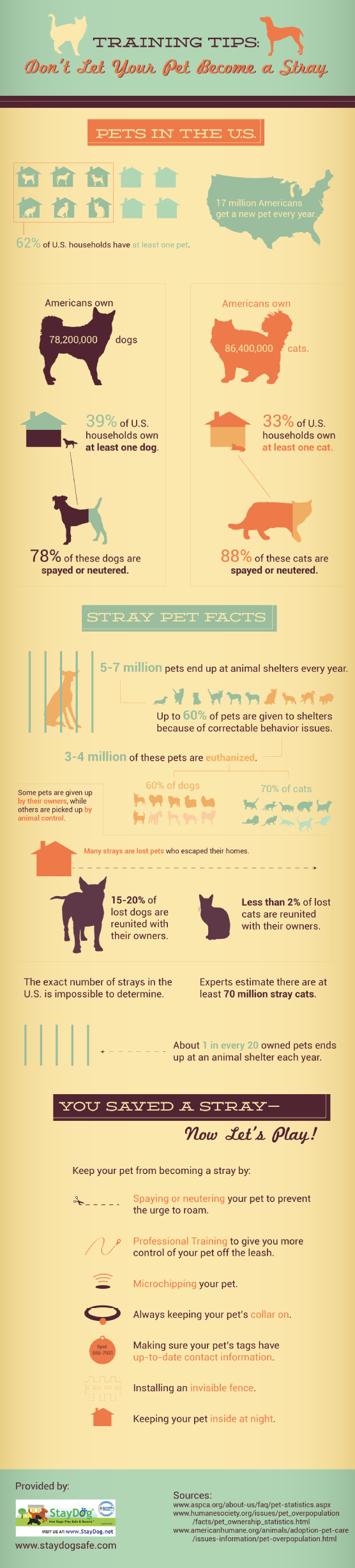 Training Tips: Don't Let Your Pet Become a Stray