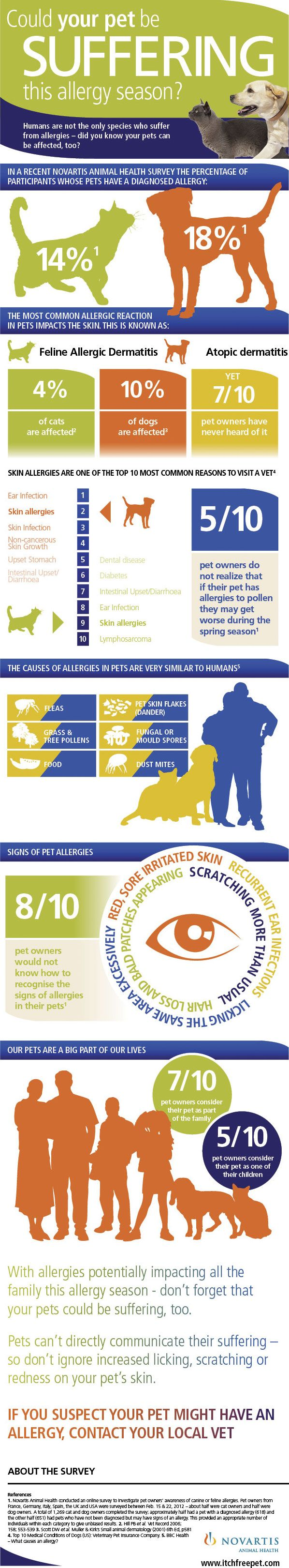 Could your pet be suffering this allergy season?