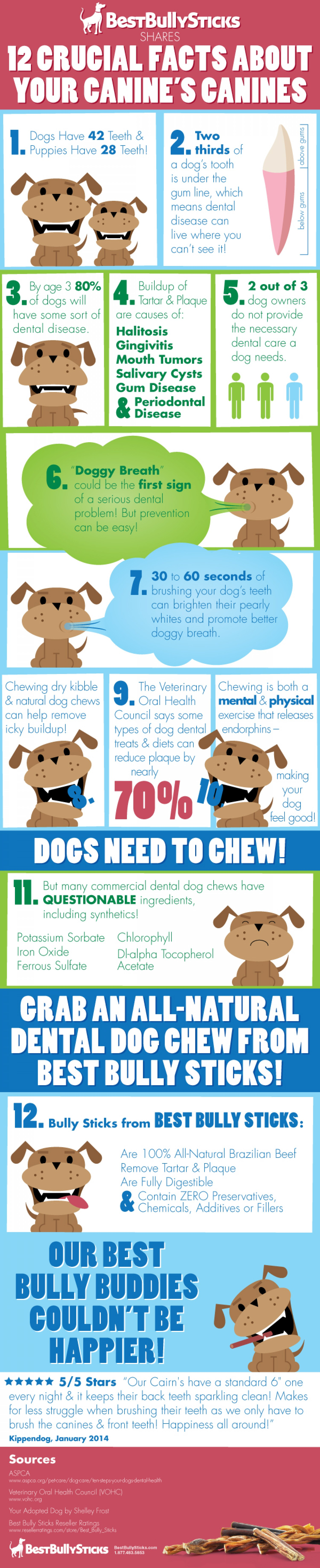 09 12-crucial-facts-about-your-canines-canines_52fa98c816418_w1500