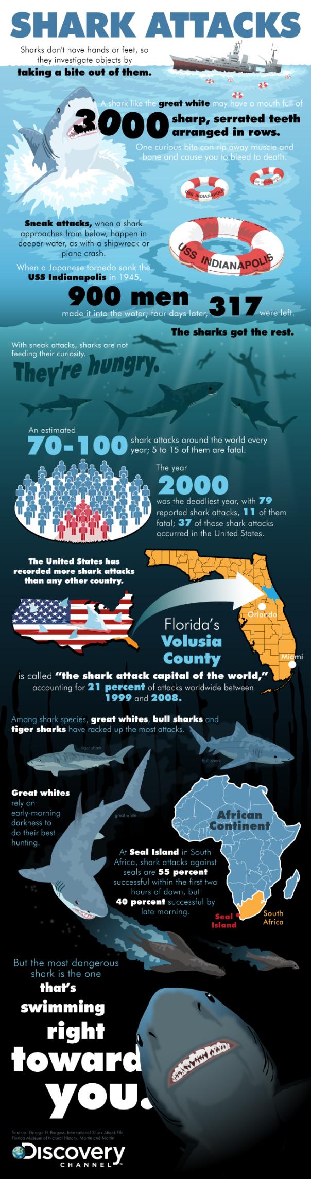 10. Shark Attacks