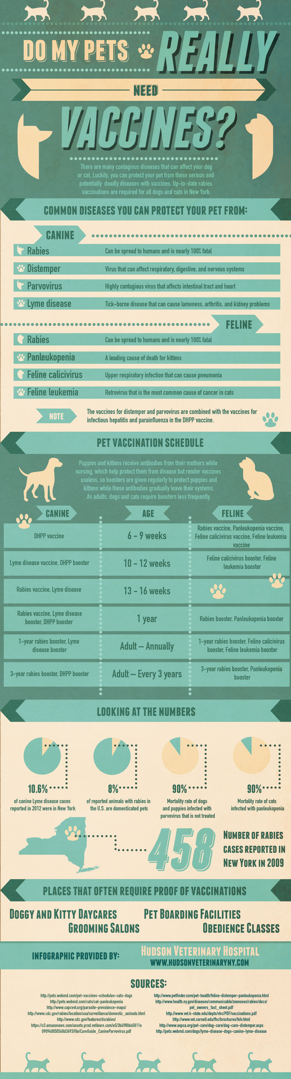 Do-my-pets-really-need-vaccination
