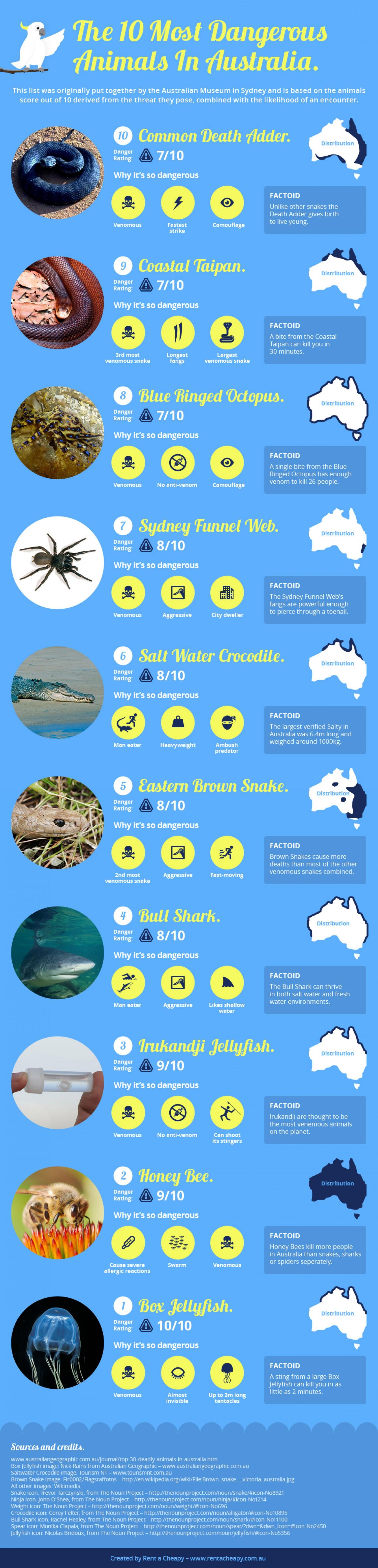 15. The 10 most dangerous animals in Australia