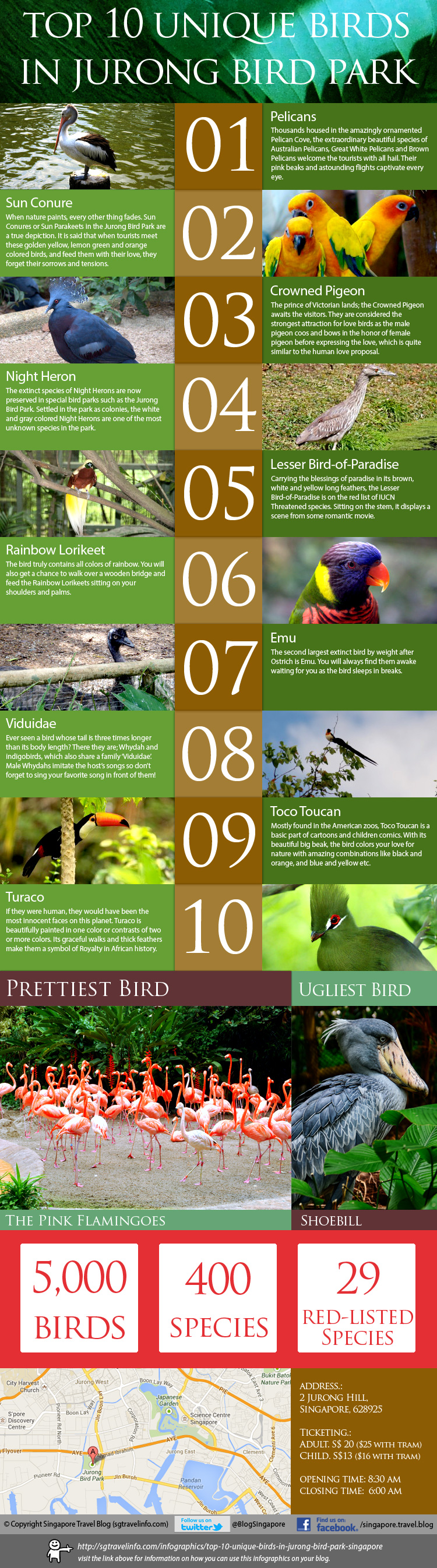 20. Top ten unique birds in Jurong Bird Park